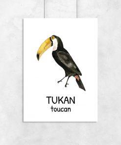 Plakat edukacyjny - Tukan dla dzieci