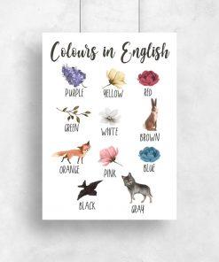 Plakat dziecięcy do nauki kolorów z białą margaretką