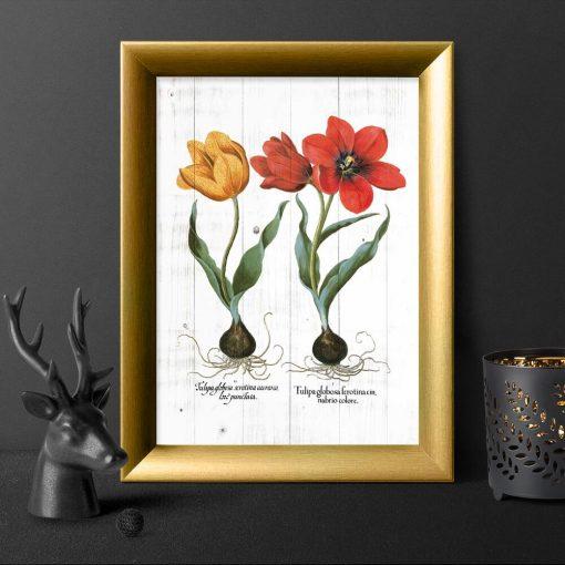 Plakat z tulipanami do przedpokoju