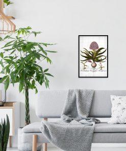 Hiacynt na deskach - Plakat botaniczny do salonu