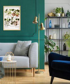 Botaniczny plakat z czarną porzeczką do salonu