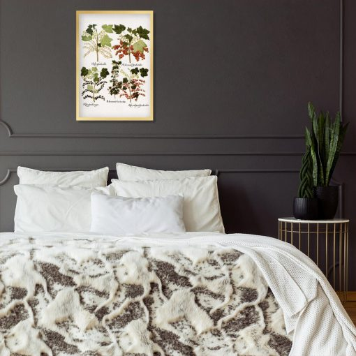 Botaniczny plakat z czarną porzeczką do sypialni