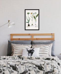 Botaniczny plakat z motywem kwiatów polskich do sypialni