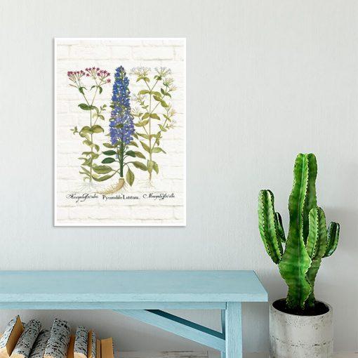 Edukacyjny plakat z polnymi kwiatami do gabinetu