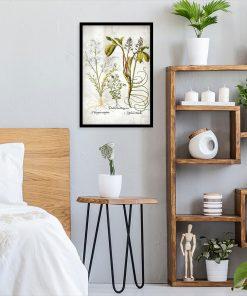 Kwiat frangipani - Plakat florystyczny do sypialni