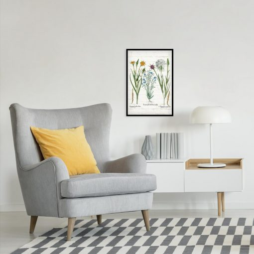Plakat botaniczny - Salsefia purpurowa do sypialni