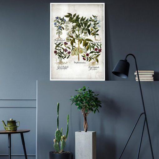 Plakat botaniczny z barwnymi kwiatami do gabinetu