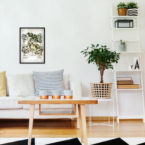 Plakat botaniczny z barwnymi kwiatami do salonu