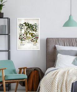 Plakat botaniczny z barwnymi kwiatami do sypialni