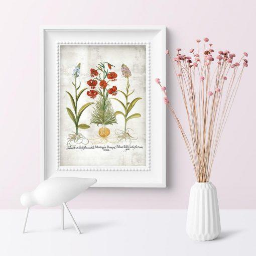 Plakat edukacyjny z motywem roślin