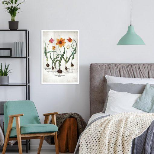 Plakat edukacyjny z tulipanem do sypialni