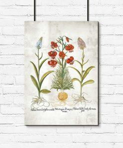 Plakat naukowy z kwiatami