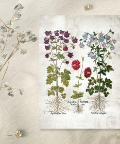 Plakat ogrodowe kwiaty na dekoracji sklepu