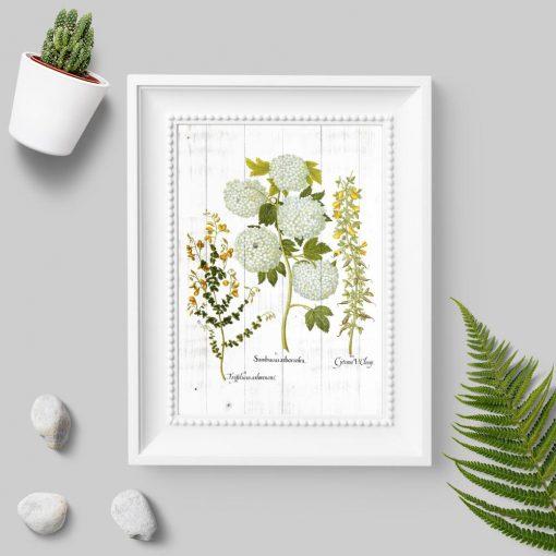 Plakat w zielonej tonacji z kwitnącymi roślinami
