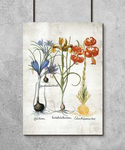 Plakat z kolorowymi kwiatami do ozdoby szkolnej klasy