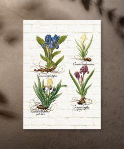 Plakat z kwiatami jako pomoc edukacyjna