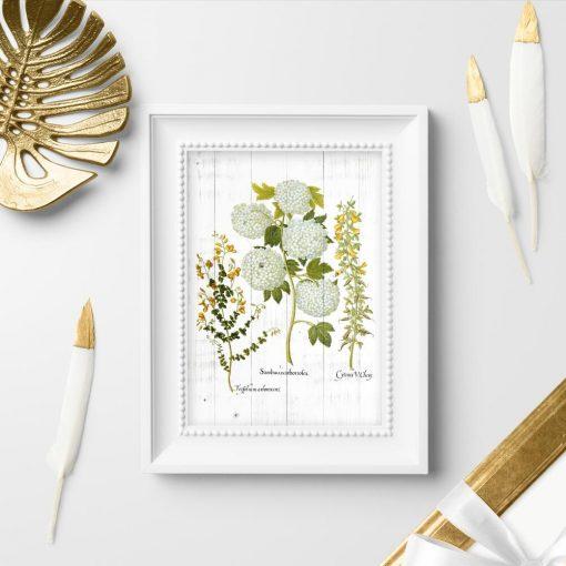 Plakat z kwiatami kaliny i wyki