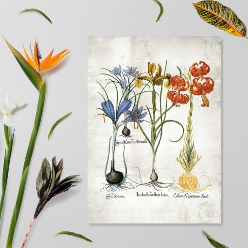 Plakat z kwiatami kwitnącymi