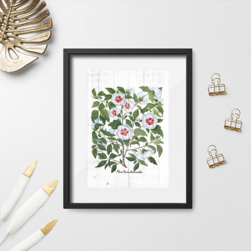 Plakat z kwiatami malwy w stylu rustykalnym