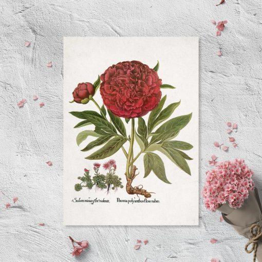Plakat z kwiatami w rozkwicie