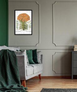Plakat z lilia tygrysią do salonu