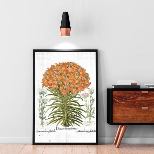 Plakat z lilią tygrysią na przedpokój