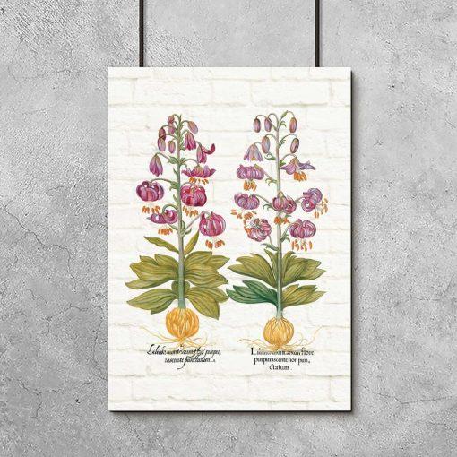 Plakat z liliami w kolorze fioletu
