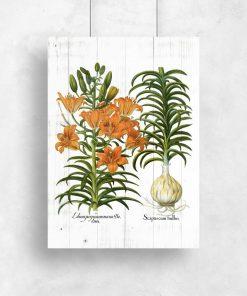 Plakat z liliami w pomarańczowym kolorze