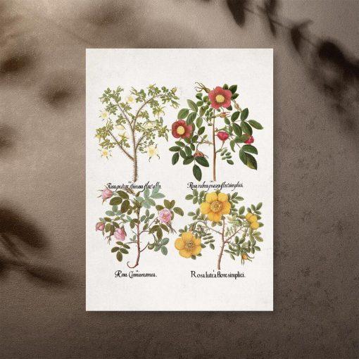 Plakat z motywem kwiatowym do dekoracji szkoły