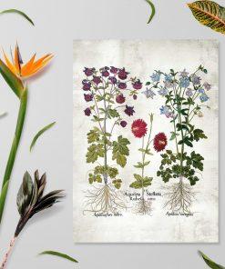 Plakat z motywem kwitnących ogrodowych kwiatów