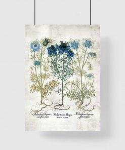 Plakat z motywem roślin zielnych