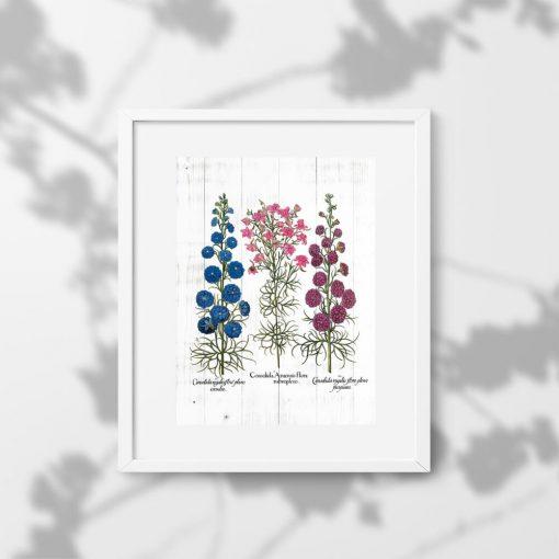 Plakat z polnymi kwiatami