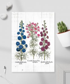 Plakat z polnymi roślinami