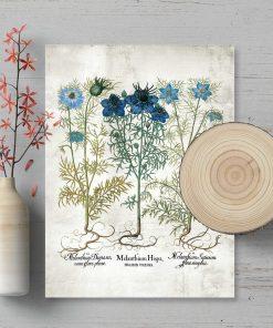 Plakat z roślinami dziko rosnącymi
