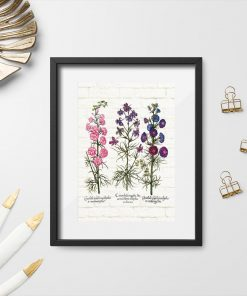 Plakat z roślinami łąkowymi z różowej tonacji