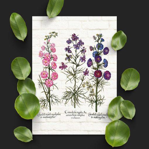 Plakat z roślinami leczniczymi na cegłach