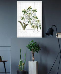 Plakat z roślinnym motywem na białych deskach do gabinetu