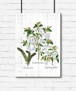 Plakat z roślinnym motywem na białych deskach do przedpokoju