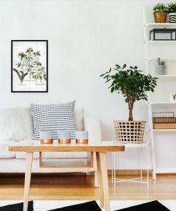 Plakat z roślinnym motywem na białych deskach do salonu