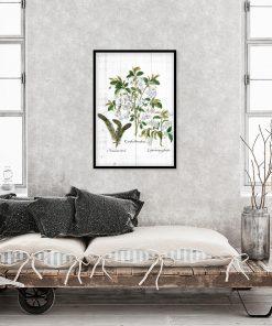 Plakat z roślinnym motywem na białych deskach do sypialni
