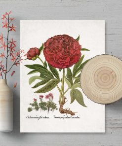 Plakat z z motywem kwiatów