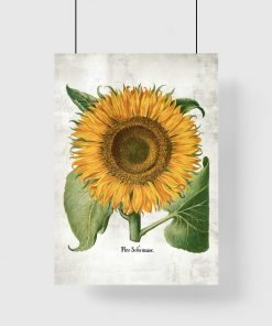 Plakat ze słonecznikiem w kolorze słońca