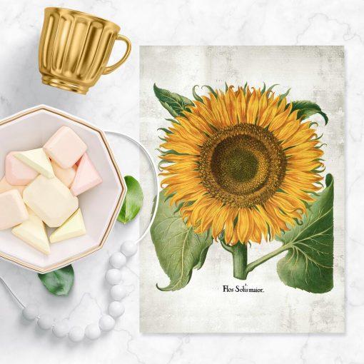 Plakat żółty słonecznik do oprawienia