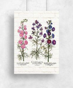 Plakaty z ziołami na tle cegieł