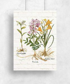 Rustykalny plakat z kwiatami i nazwami