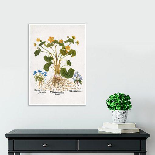Rustykalny plakat z łąkowymi kwiatami na przedpokój