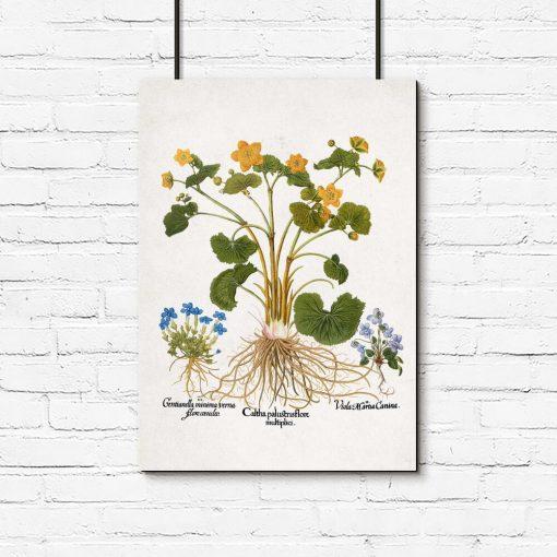 Rustykalny plakat z polnymi kwiatami do kuchni