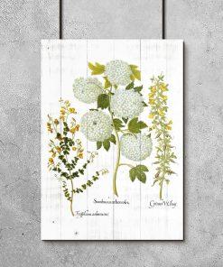 Rustykalny plakat z roślinami