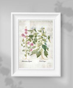 Plakat do oprawienia z motywem kwiatowym