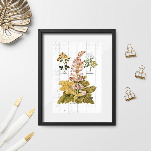 Plakat rustykalny na deskach motywy roślinne